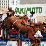 Laughlin River Stampede